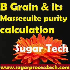 B massecuite purity online calculation sheet | Sugar Technology | Grain and molasses ratio calculation for B continuous pan