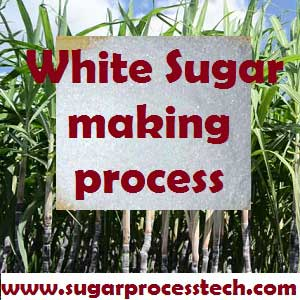 Plantation White Sugar Manufacturing Process | Double sulphitation sugar
